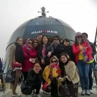 nganphat-hinh-anh-hoat-dong-cua-cong-ty19